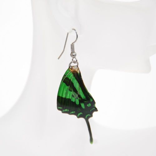 Earrings Graphium Weiskei, Green Black