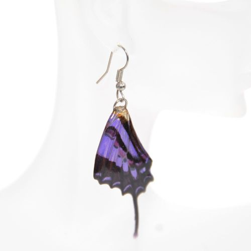 Earrings Graphium Weiskei, Purple Black