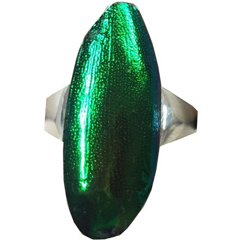 Men's Ring 925 sterling silver with emerald beetle